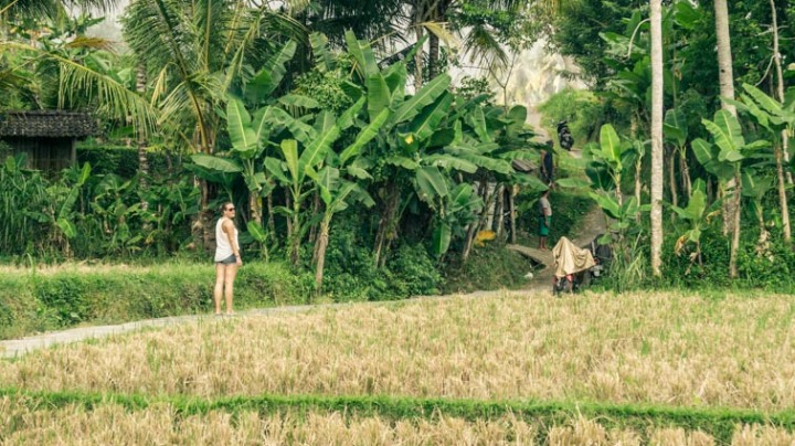 indonesie-bali-nw-19.jpg