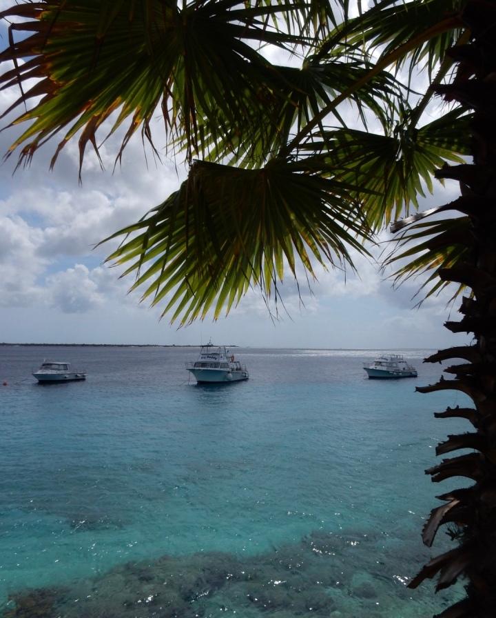 Favourite beaches –Bonaire